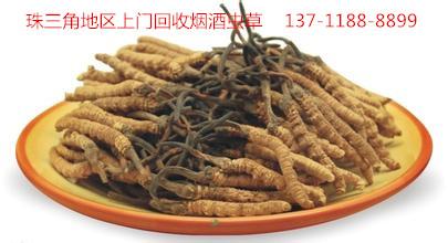 广州天河区回收冬虫夏草,天河区回收冬虫夏草